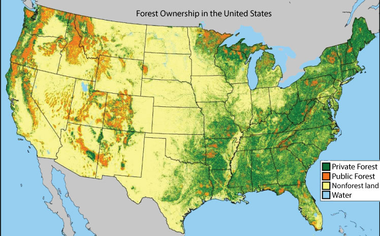 Forest Facts - Forest Landowners Association