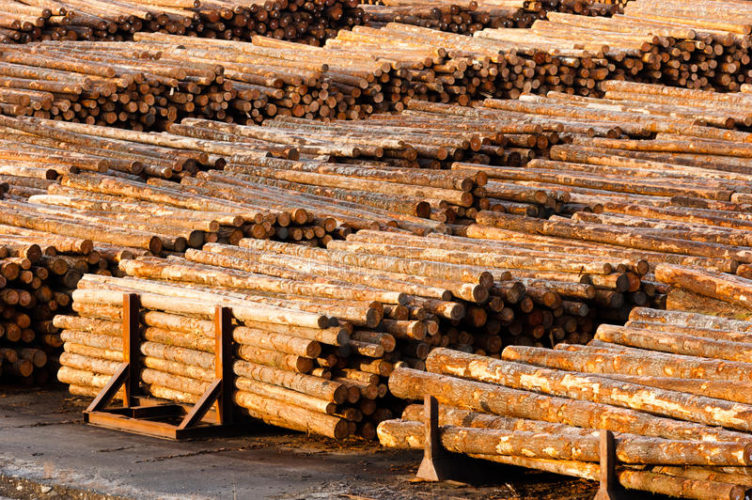 Expanding and Growing Foreign Markets for Timber